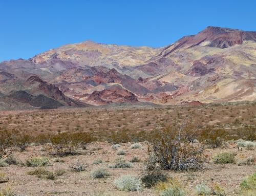Des Canyons aux Étoiles – desert